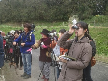 birdwating2015.jpg
